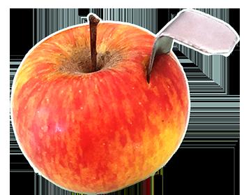 Apfel mit Apfeleisen