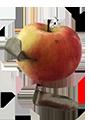 Apfeleisen mit Apfel
